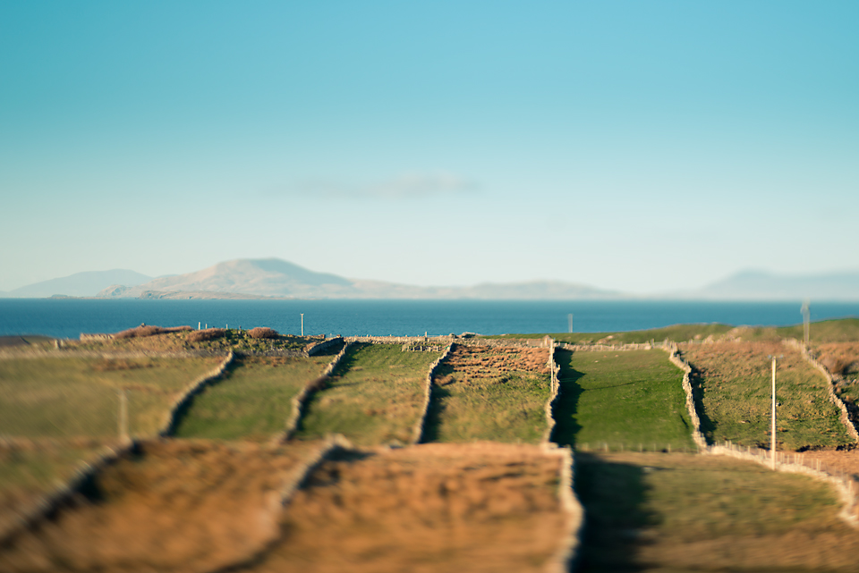 irish fields and the ocean