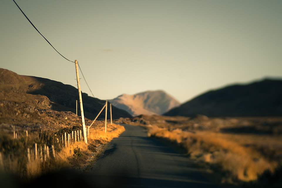 a road in the evening sunshine