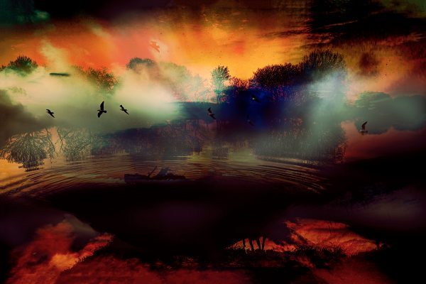 Abstract image with birds and landscape